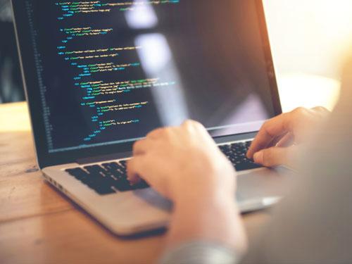nanobird web designing